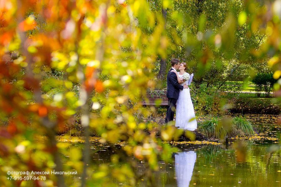фотограф на свадьбу осень октябрь, сентябрь