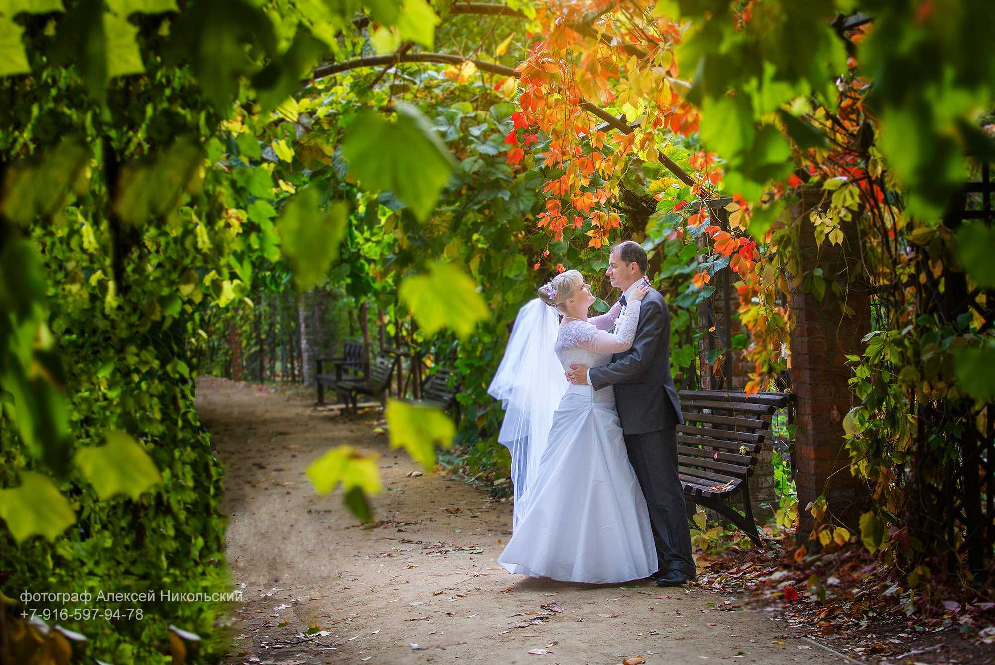 Фотосъемка полных невест, красивая осенняя фотосесесия