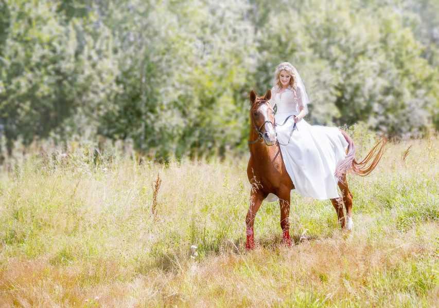 свадебное фото с лошадью